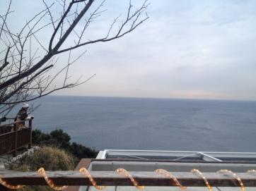 Depuis les hauteurs du jardin, vue sur le Pacifique