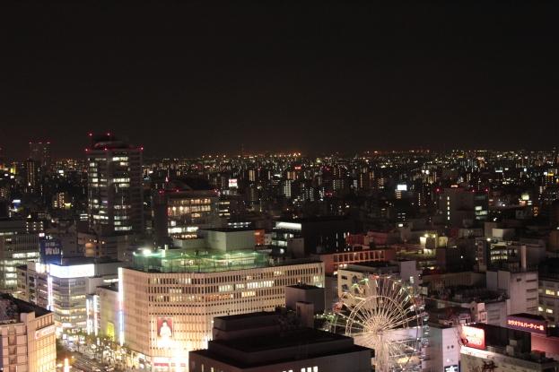 Nagoya TV Tower - Vue (2)