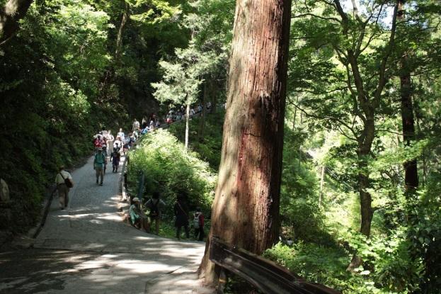Début de piste - un groupe d'enfants descend du Mont, il est 14h.