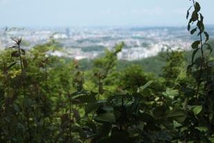 À mi chemin, Vue sur Tokyo