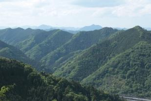 À mi-chemin, vue sur les monts