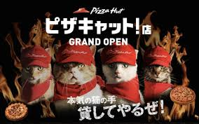 source: http://www.excite.co.jp/News/android/20140819/Tabroid_news_2014_08_pizzacat.html