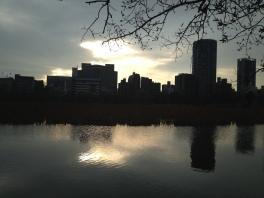 Un début de soirée du mois de mars, au parc de Ueno
