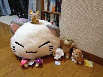 Voici un échantillon de nos gains à Akihabara ! Des heures d'amusement et des récompenses kawai (ou hideuses, selon votre chance !)
